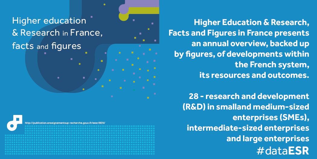 an overview of small and medium sized enterprises Inclusive micro, small, and medium-sized enterprises development project (rrp mld 43566) sector assessment (summary): micro, small, and medium-sized.